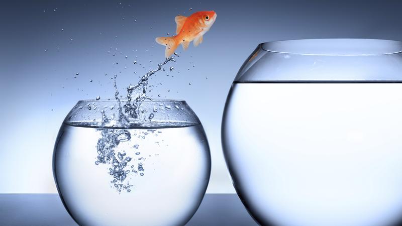 تغییر مسیر شغلی بدون از دست دادن ارشدیت!